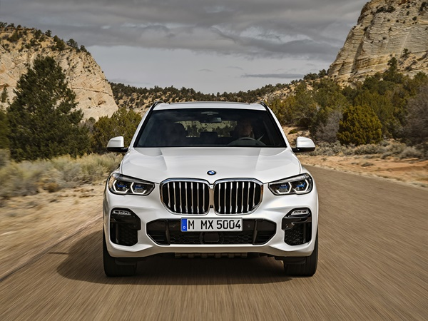 BMW X5 30d mhev xdrive executive 218kW aut