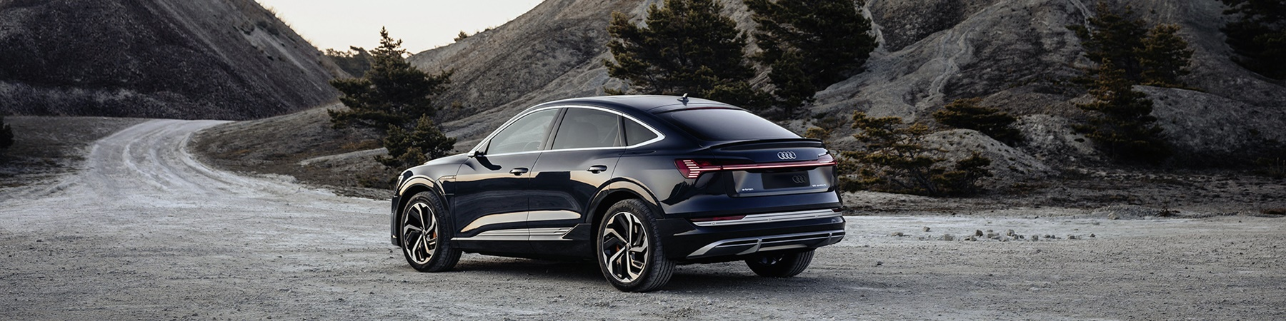 Audi E-tron sportback 71kWh 295 km actieradius